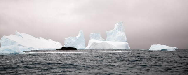 buzul hasadı